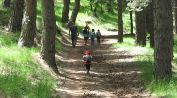 catania-turismo-parco-etna